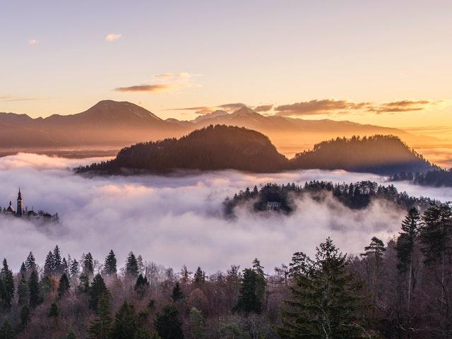 mist-misty-fog-foggy-7919.jpg