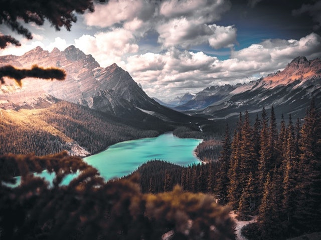 scenic-photo-of-lake-surrounded-by-trees-1903702.jpg